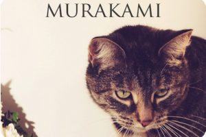 MADE IN HEIGHTS – Murakami